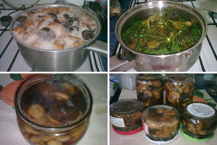 Как замариновать грибы грузди на зиму: рецепты с видео и фото маринования в домашних условиях