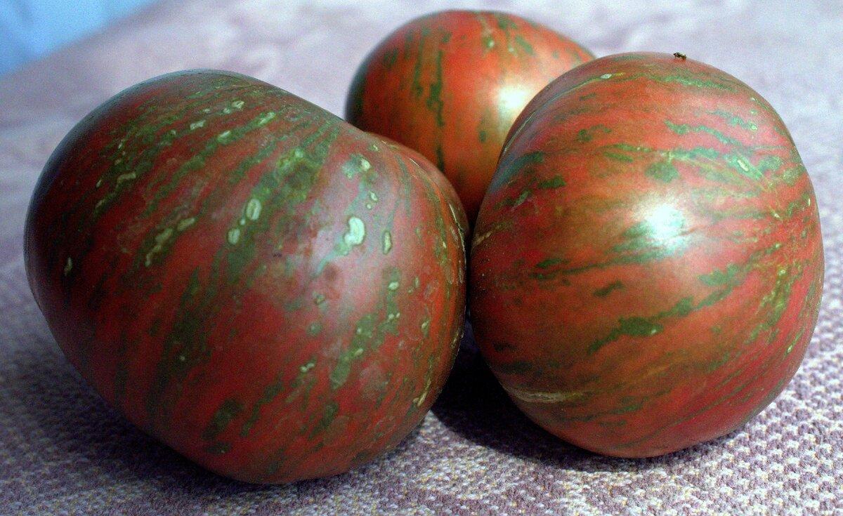 Крупноплодный здоровячок с божественным вкусом — томат беркли тай дай хаат: полное описание сорта