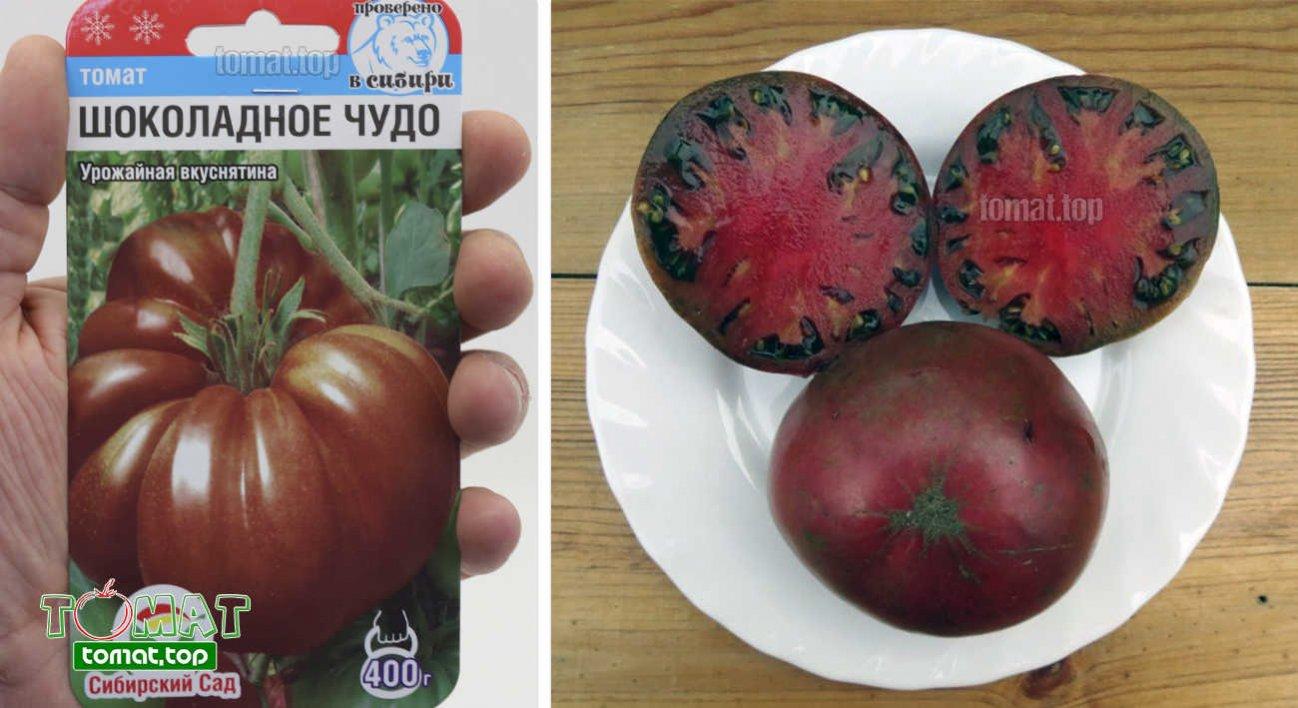 Томат шоколадный: описание сорта, отзывы, фото, урожайность | tomatland.ru