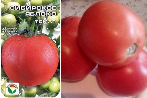 Томат яблочный: описание сорта