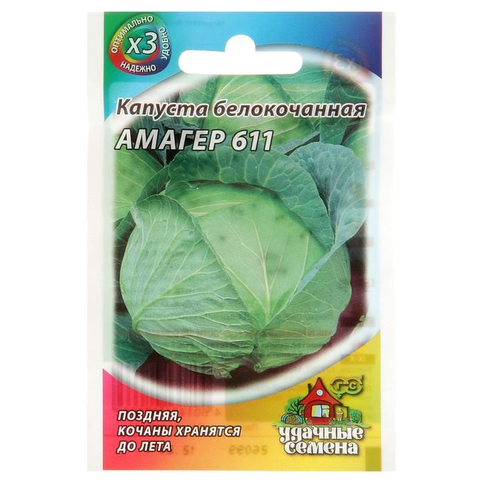 Сорт поздней капусты амагер — описание, преимущества, особенности выращивания