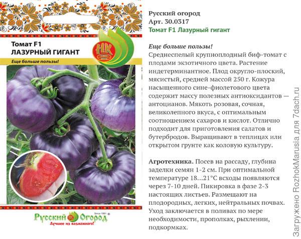 Томат сахар коричневый - описание сорта, характеристика, урожайность, отзывы, фото
