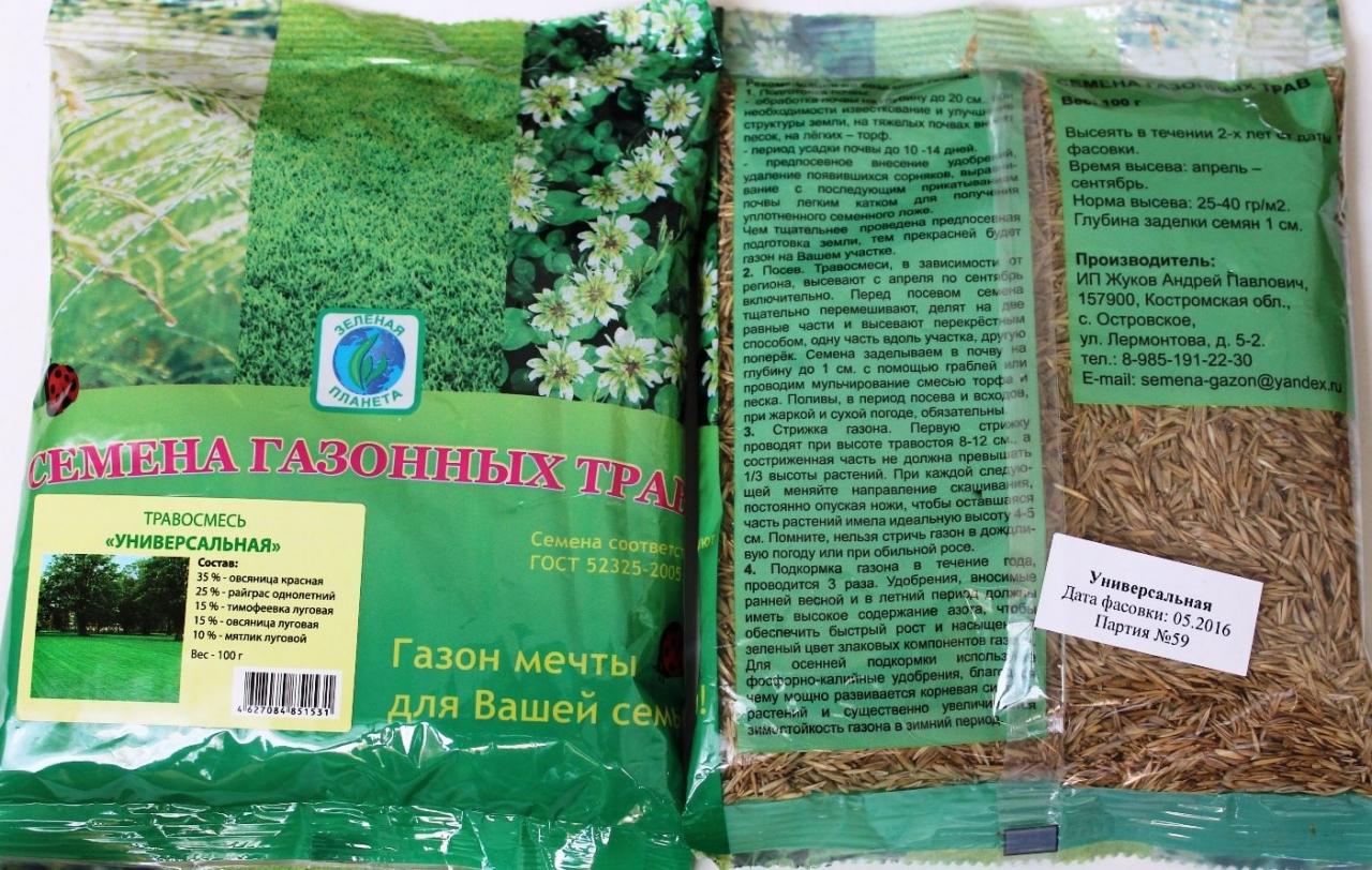 Мавританский газон: основные характеристики и особенности выращивания