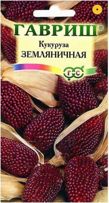 Кукуруза - 76 фото как вырастить здоровую и сладкую кукурузу