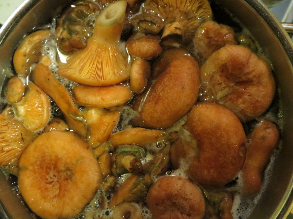 Пошаговые рецепты приготовления маринованных рыжиков на зиму в домашних условиях