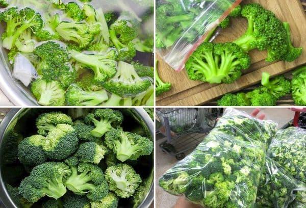 Как заморозить брокколи на зиму в домашних условиях правильно, нужно ли отваривать капусту перед заморозкой, сроки и условия хранения заготовки в морозилке