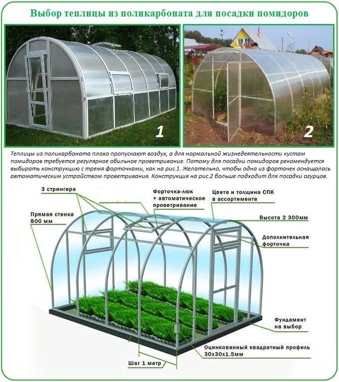 На каком расстоянии сажать помидоры: существующие схемы посадки томатов