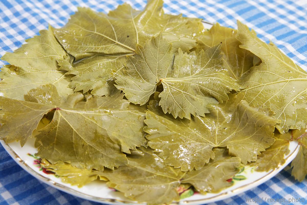 Рецепты консервированных виноградных листьев для долмы