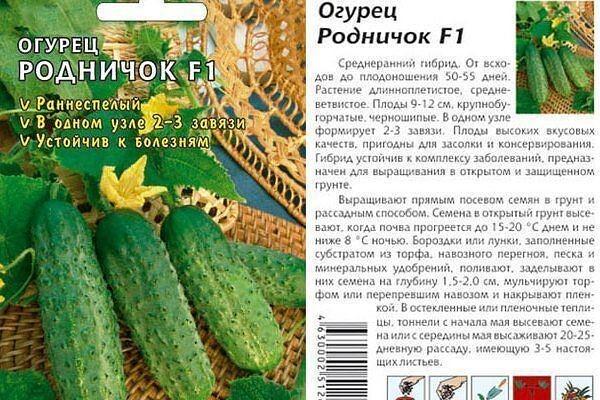 Огурцы веселые гномики f1: отзывы, описание сорта, фотографии, посадка и выращивание, уход и урожайность