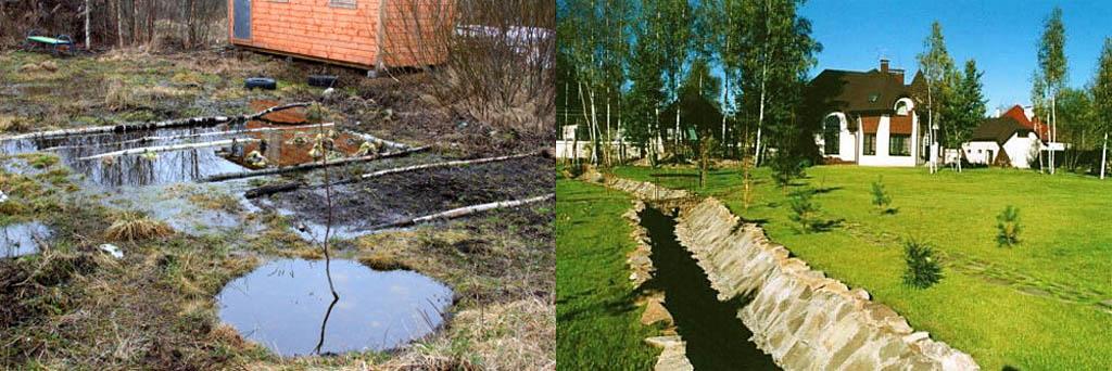 Участок с высокими грунтовыми водами. что делать? опрелеление, дренаж, что посадить — ботаничка.ru