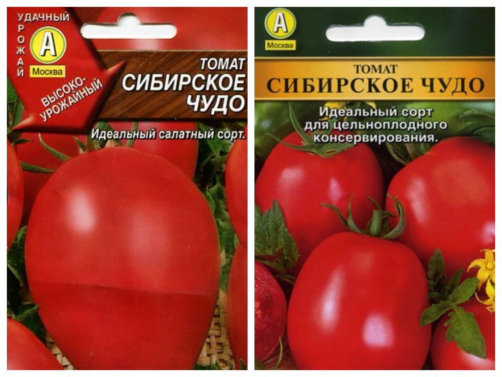 Томат сибирское чудо: отзывы, фото, урожайность, описание и характеристика | tomatland.ru