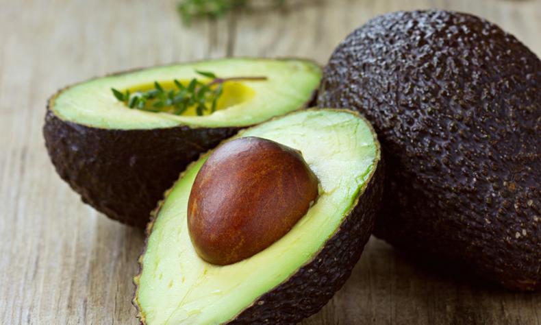 Сорта и виды авокадо — описание самых известных разновидностей