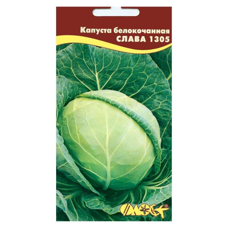 Описание, характеристика и особенности выращивания сорта капусты слава