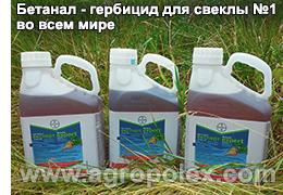 Классификация, выбор и применение гербицидов для обработки свеклы