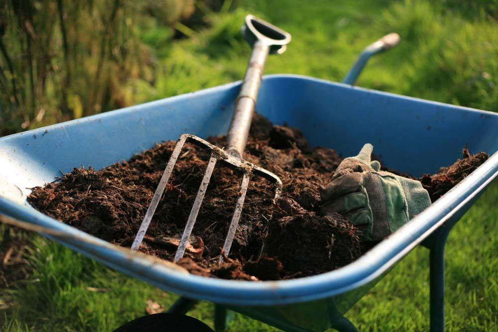 Правила применения органических удобрений из костной муки, состав и как сделать самому