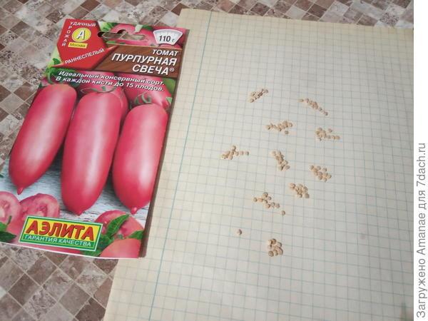 Томат гном пурпурное сердце: отзывы об урожайности фиолетовых помидоров, описание сорта и его характеристика