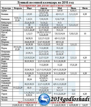 Лунный календарь на 2021 год посева и посадки, пикировки рассады томатов, перца, огурцов, капусты, базилика, сельдерея, петунии, бархатцев, лобелии, астр: благоприятные и неблагоприятные дни по месяцам, советы