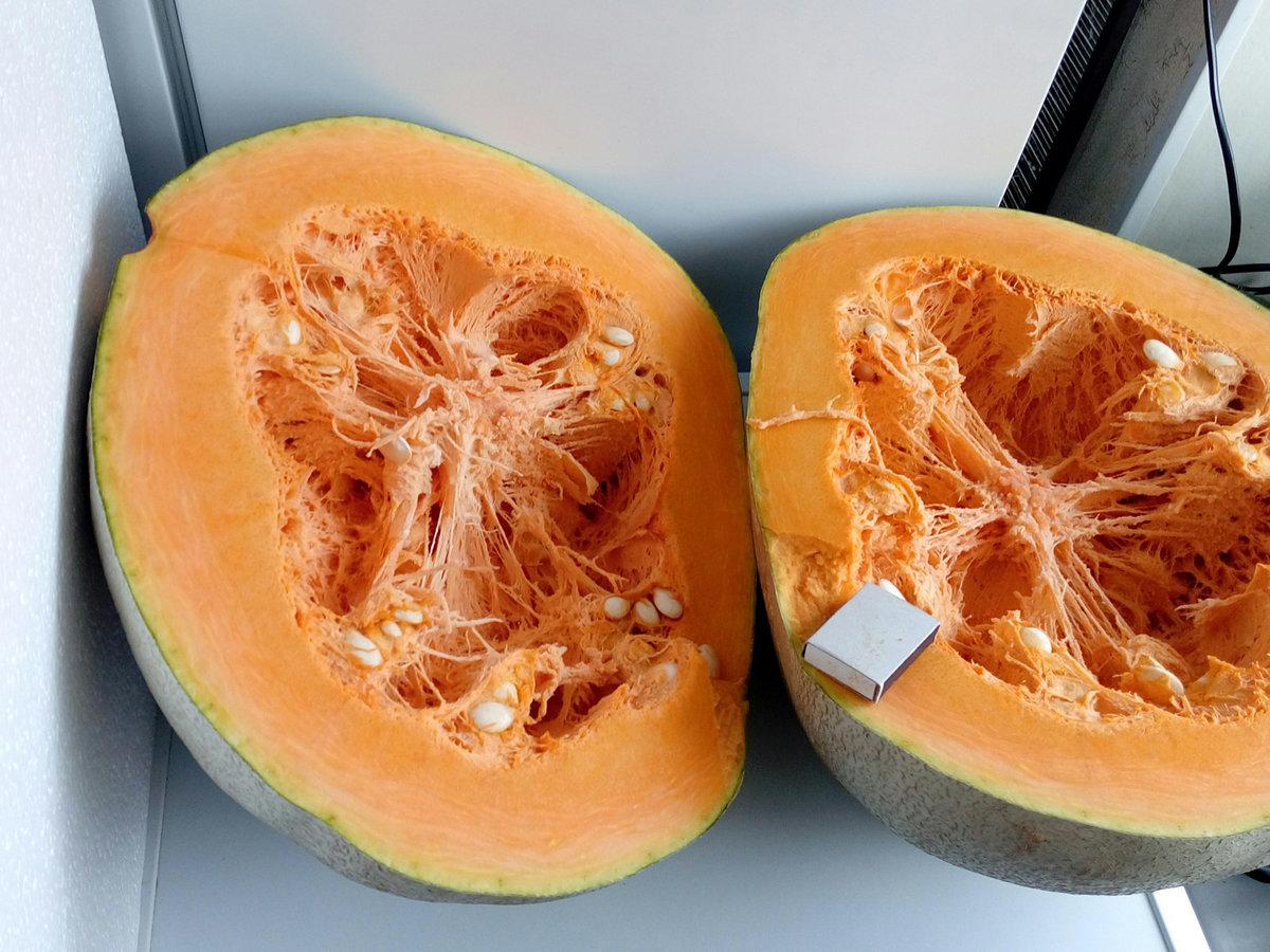Как называется дыня внутри оранжевая