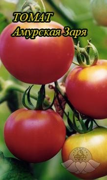 Амурский штамб помидоры подробное описание