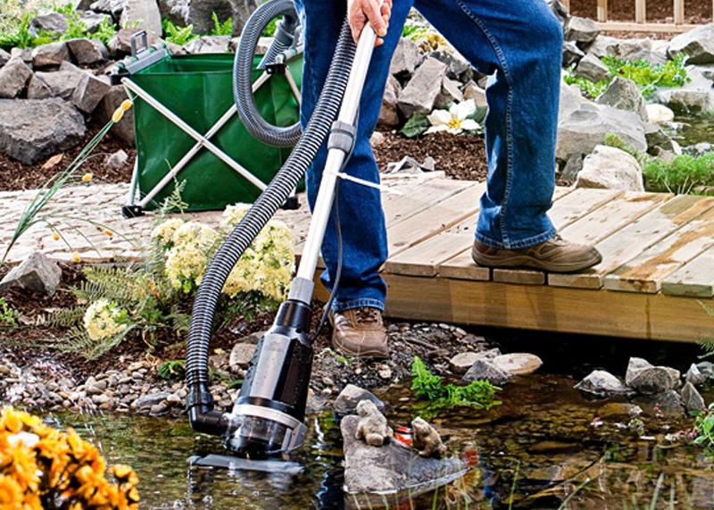 Как очистить озеро: особенности применения различных методов
