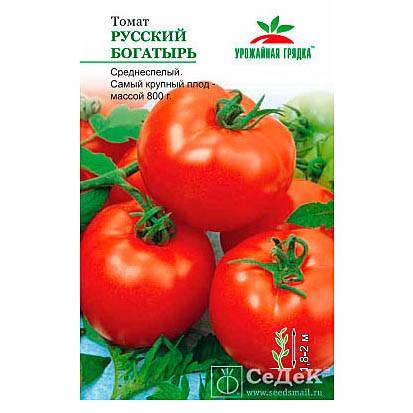 О томате русский богатырь: описание сорта, характеристики помидоров, посев