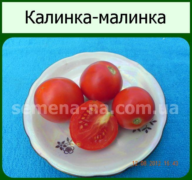 Калинка-малинка: миниатюрный томат для участка, теплицы или подоконника. описание, агротехника, отзывы