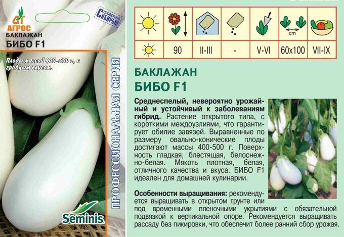 Баклажан мария: описание, выращивание, уход, фото