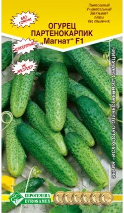 Особенности выращивания гибрида огурца «магнат f1»