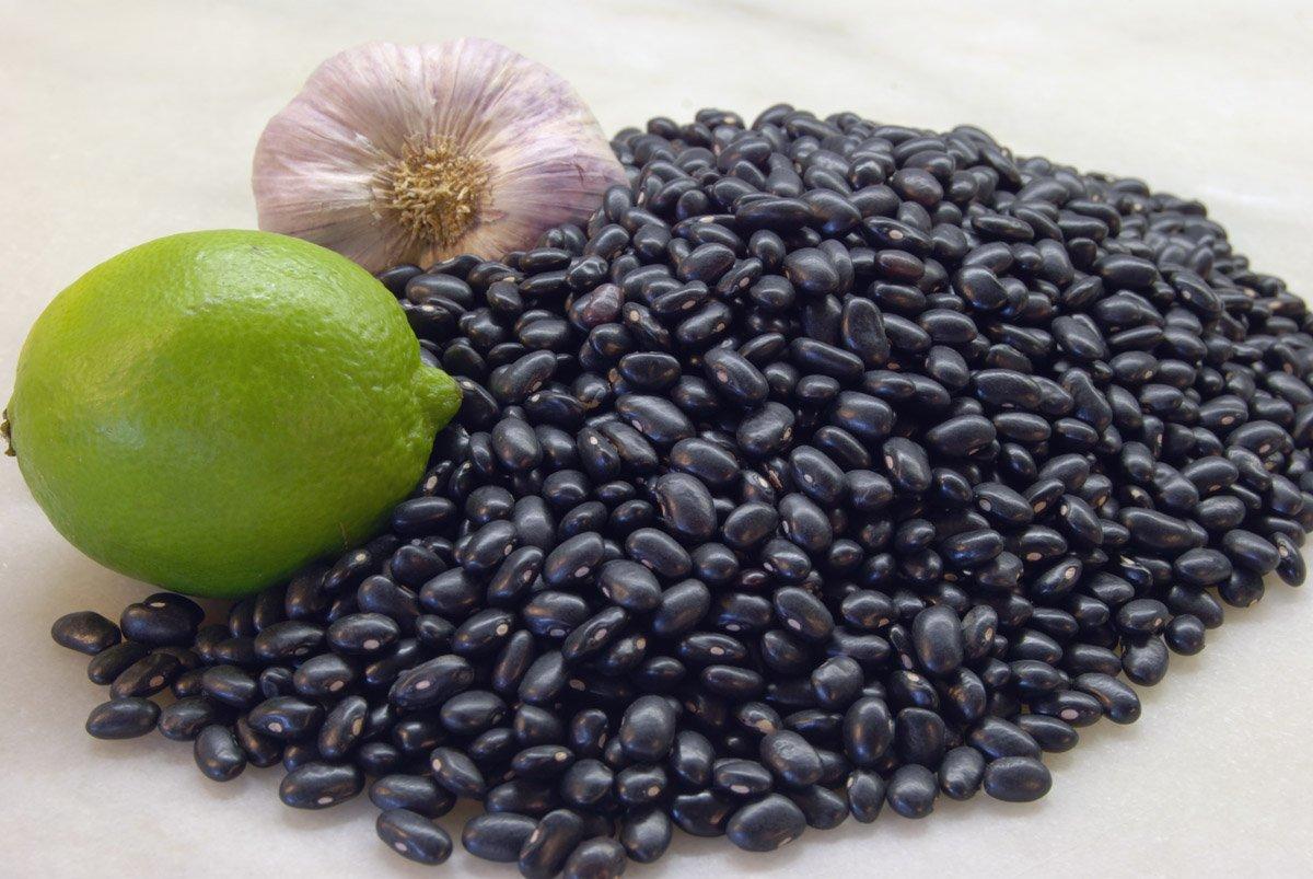 Фасоль черный глаз: особенности и правила выращивания, польза культуры, описание с фото и видео