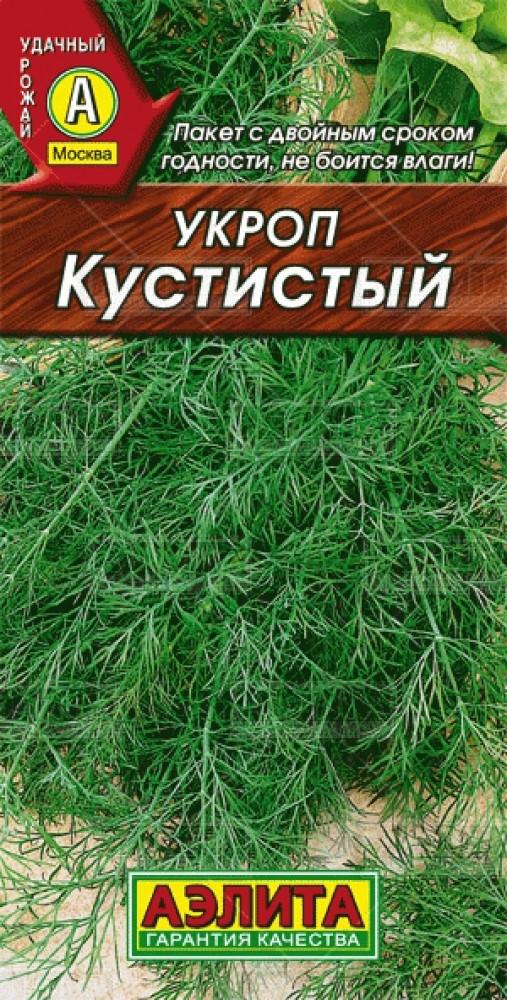 Лучшие сорта укропа на зелень: раннеспелые, среднеспелые, позднеспелые