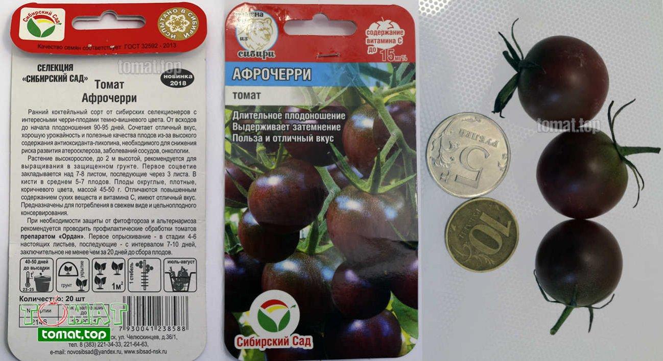 Характеристика и описание сорта томата блэк черри, урожайность