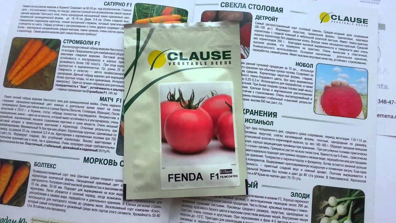 Томат фенда f1: отзывы, описание сорта, фото, характеристики, урожайность