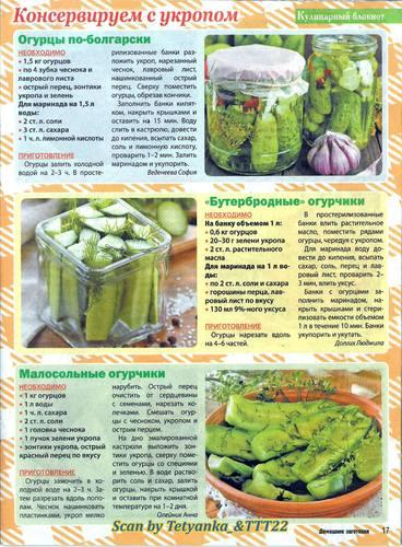 7 рецептов пошагового приготовления огурцов в заливке на зиму и условия хранения