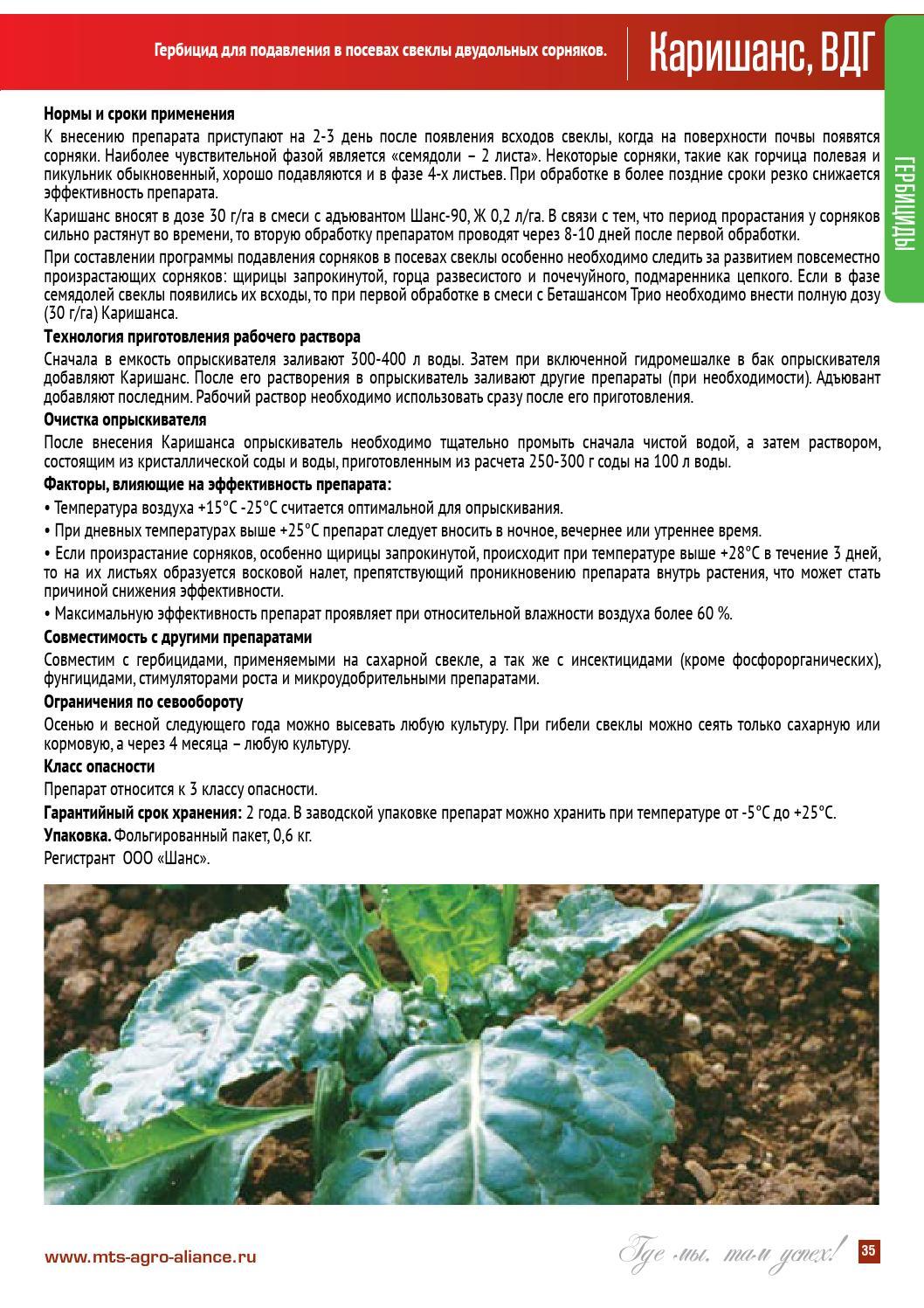 Инструкция по применению и спектр действия гербицидов, разновидности и описание лучших