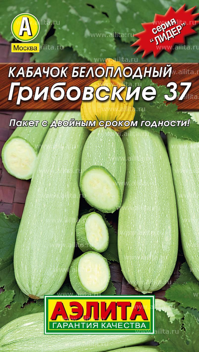 Кабачок грибовский 37: описание сорта, выращивание и уход