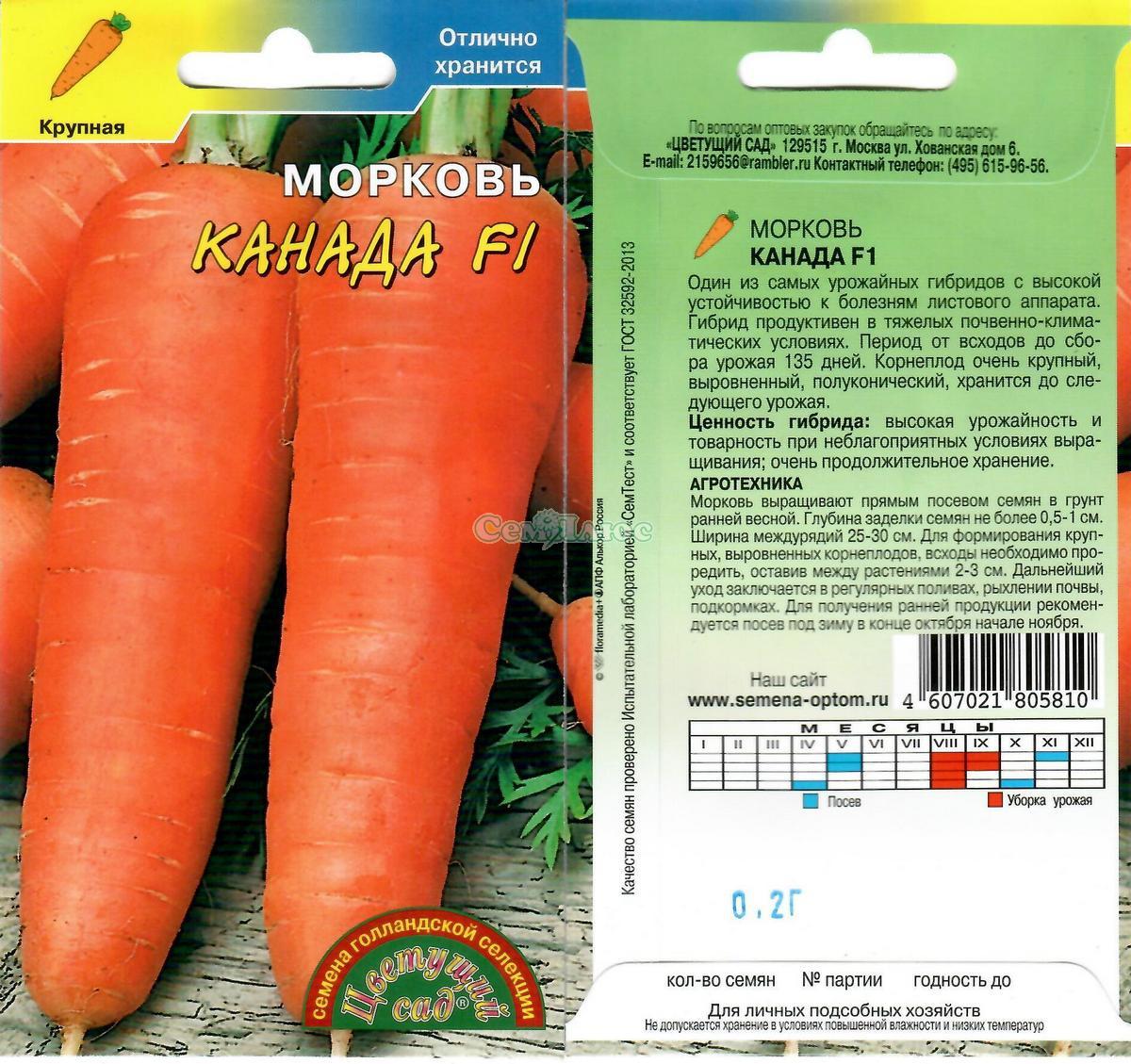 Морковь абако: характеристика и описание, отличие от других видов и похожие сорта, достоинства и недостатки, а также особенности выращивания и ухода русский фермер