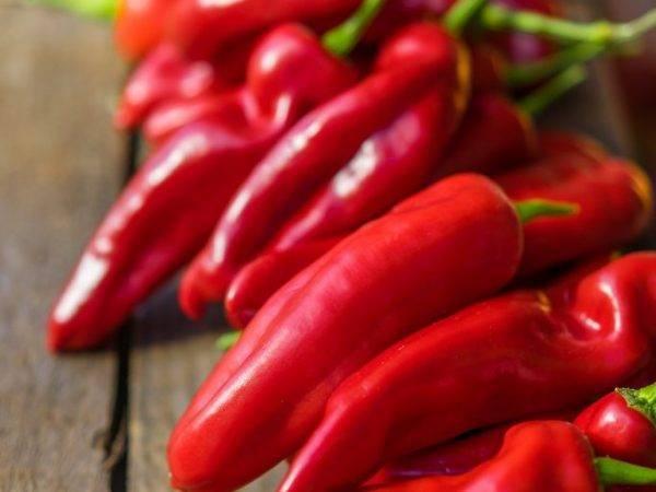 Вредители перца: описание с фото, способы борьбы