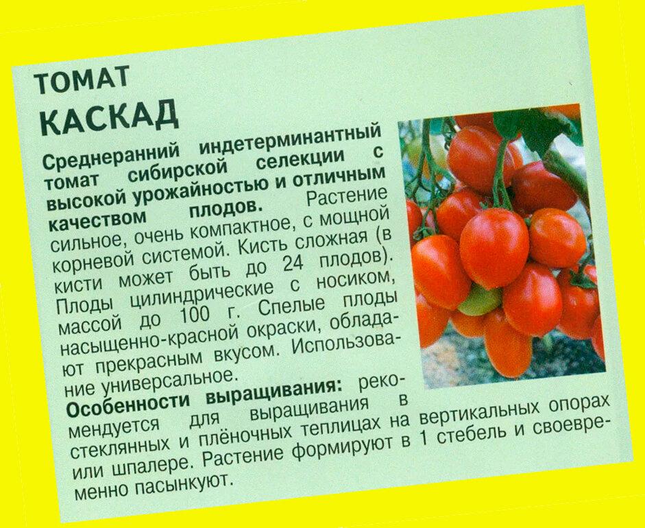 Описание сорта томата волшебный каскад и его характеристики - всё про сады
