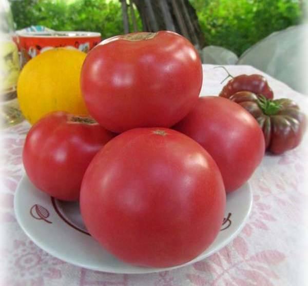"""Томат """"японская роза"""": описание сорта, особенности выращивания помидоров, происхождение и применение русский фермер"""