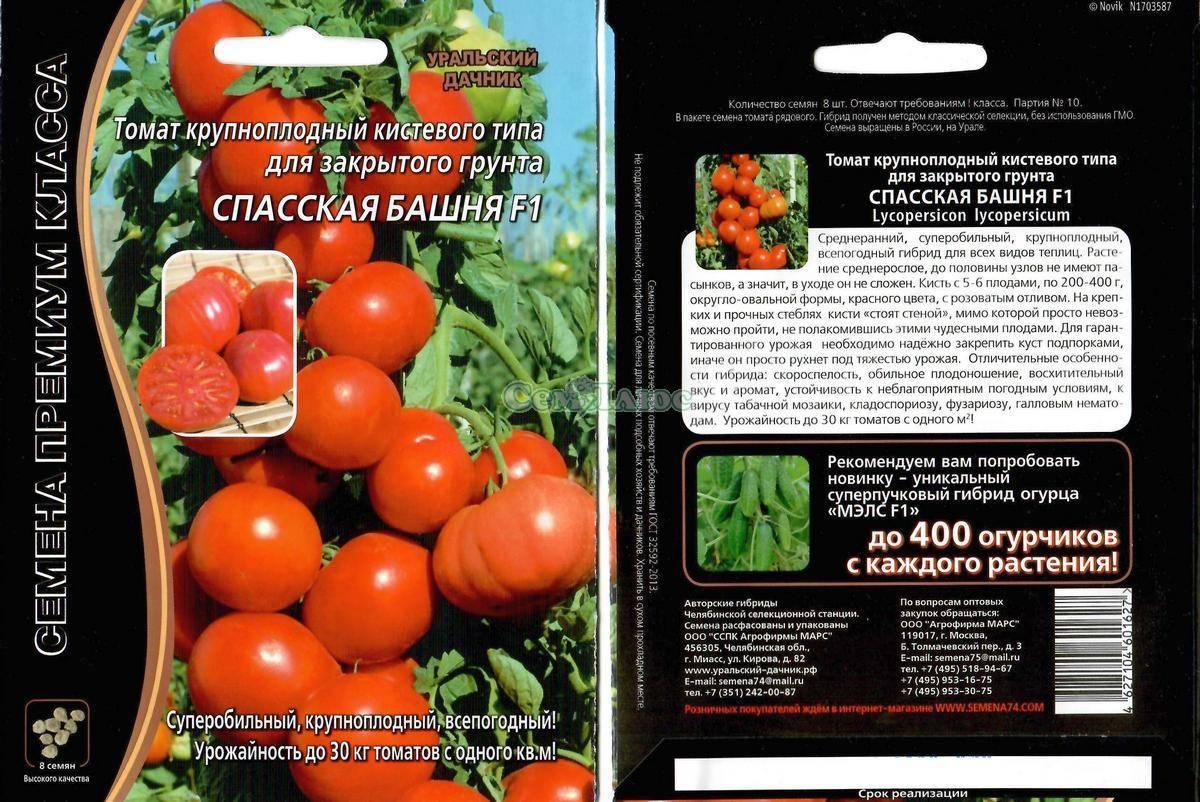 Как выращивать помидоры в открытом грунте – полное руководство от специалиста — agroxxi