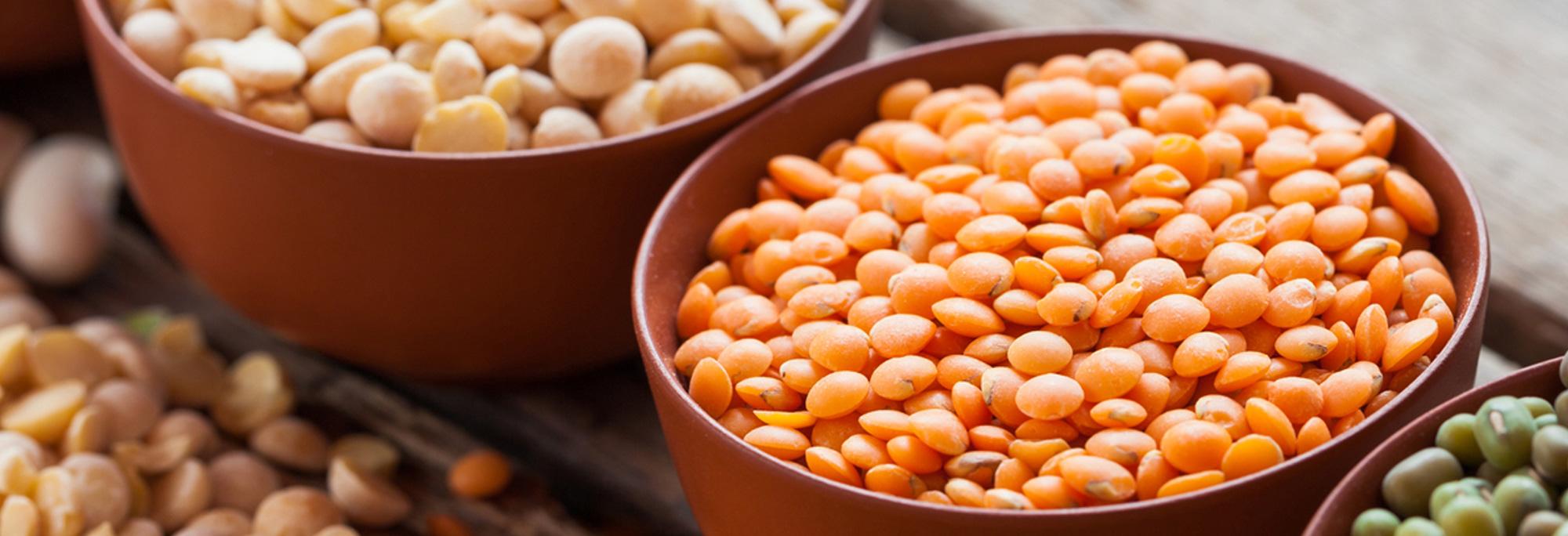 Чечевица – состав, калорийность, полезные свойства и вред