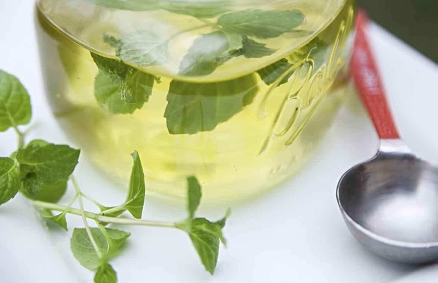 Лимонад тархун в домашних условиях: рецепт вкусного напитка