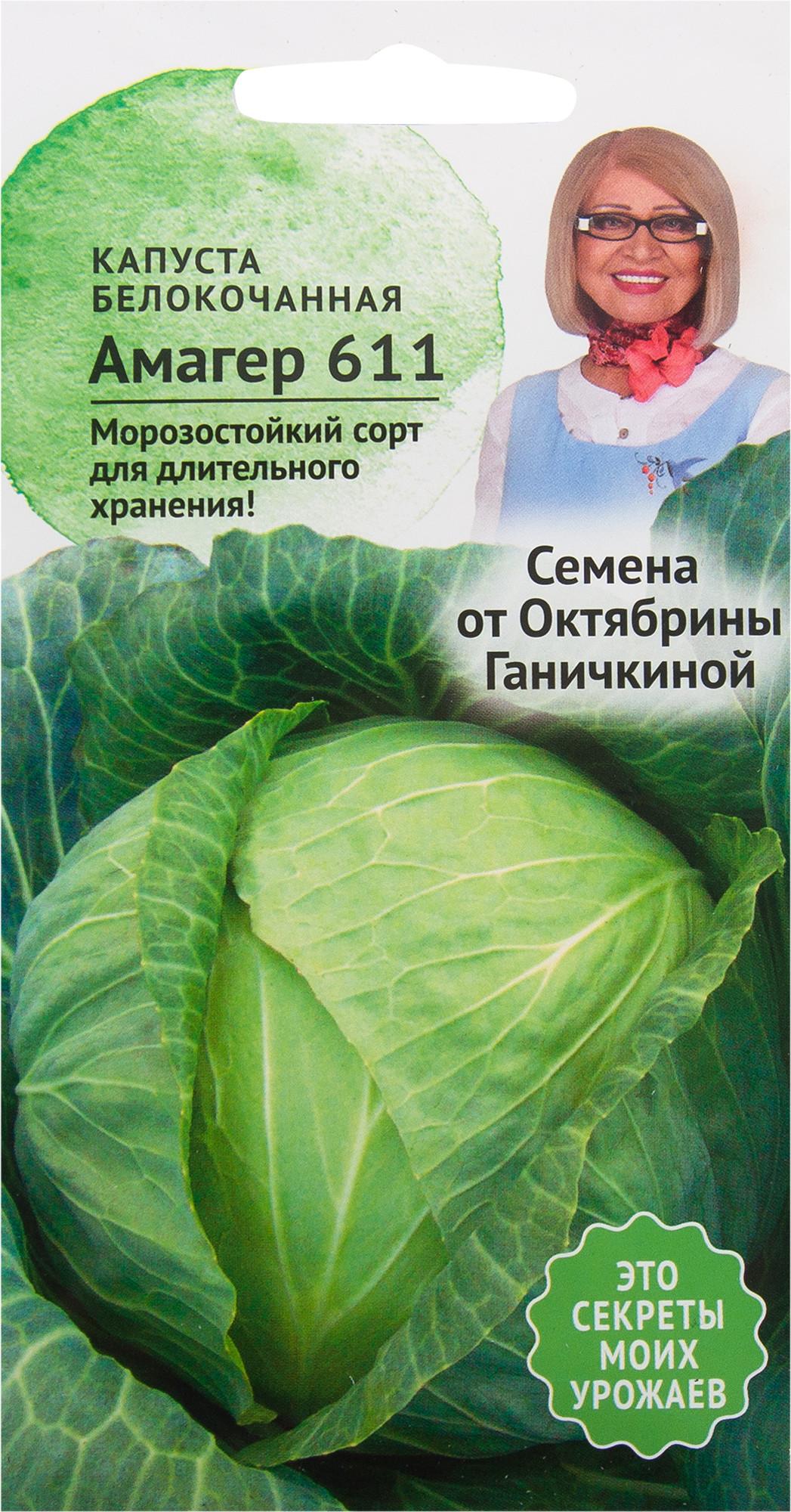 Капуста амагер: описание сорта и характеристика