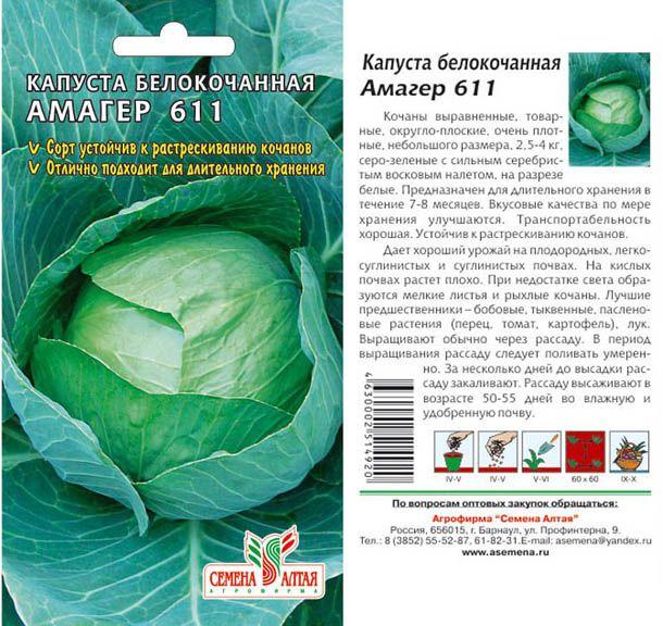 Описание сорта капусты мегатон