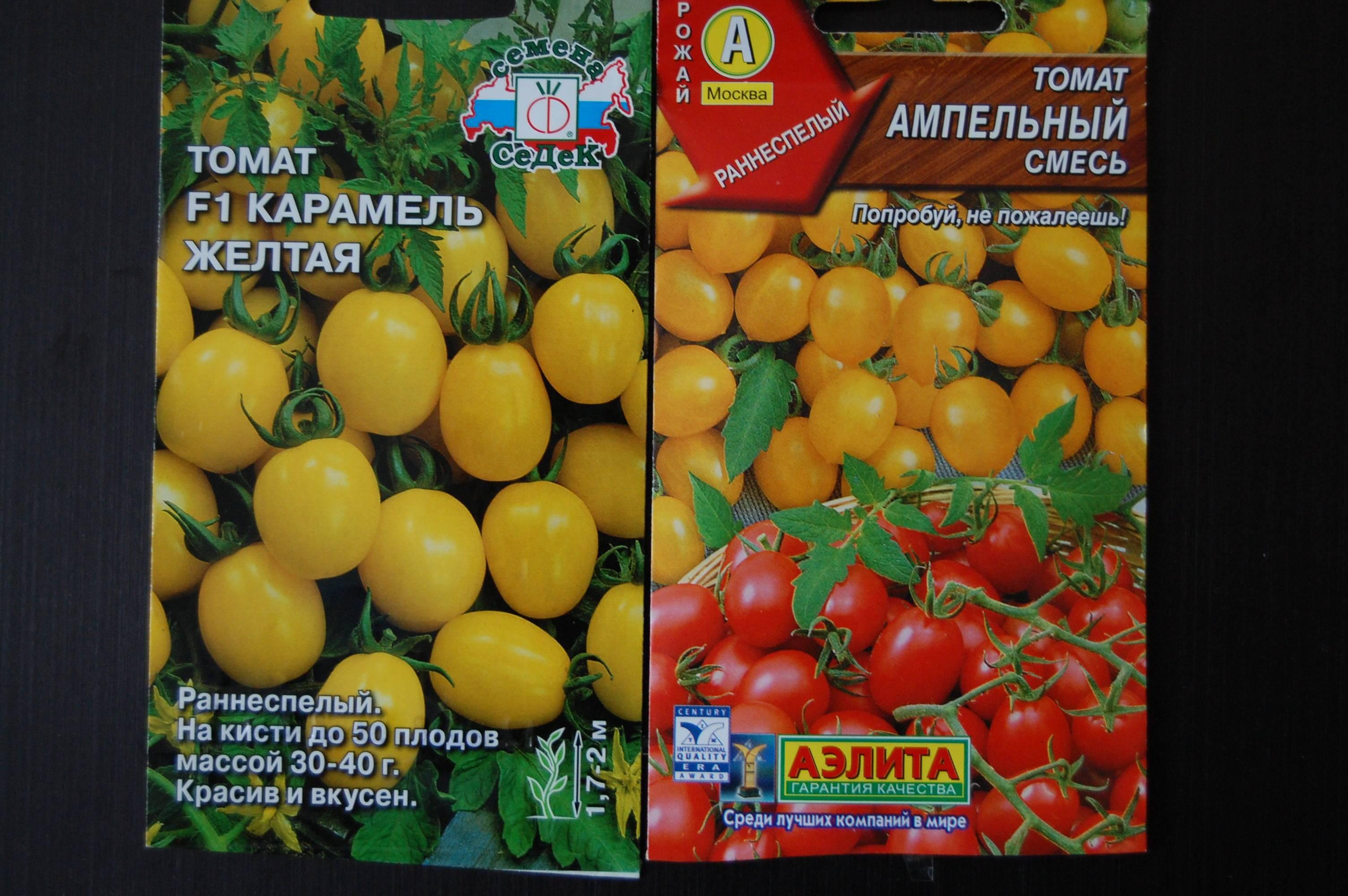 Новые и классические сорта томатов черри для выращивания на даче на supersadovnik.ru
