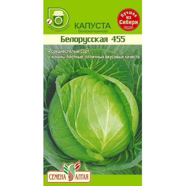 Как вырастить отличный урожай капусты белокочанной сорта белорусская? описание, рекомендации, фото