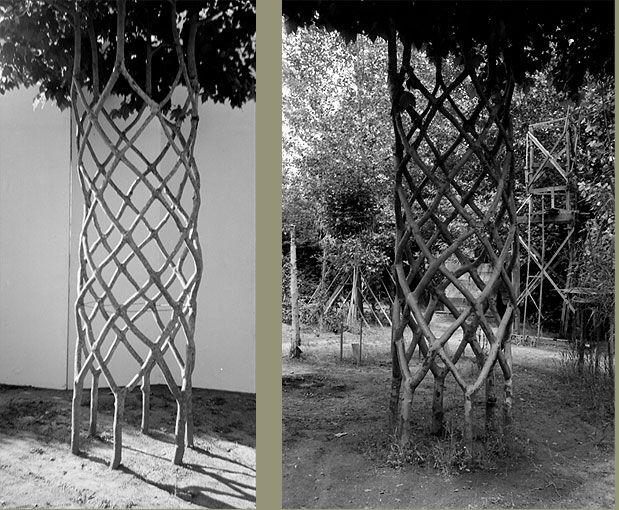 Арбоскульптура - искусство будущего