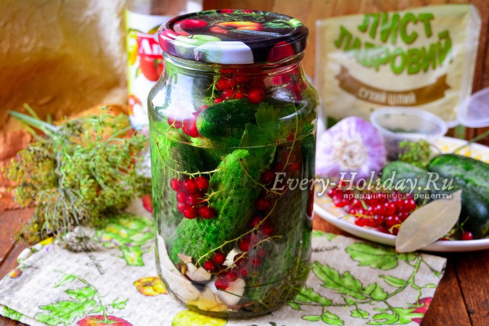 Огурцы с красной смородиной на зиму: рецепты маринования с фото и видео