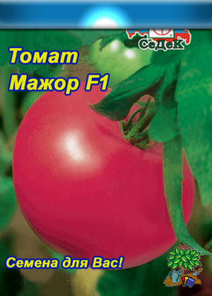 Томат марс - характеристика и описание сорта, фото, урожайность, достоинства и недостатки, отзывы
