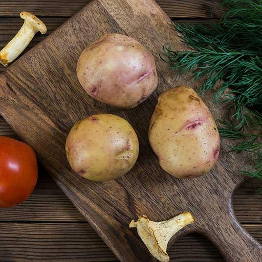 Картофель снегирь – описание сорта, фото, отзывы